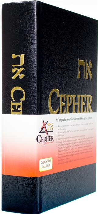 Cropped Cepher 3ER1 Angle BellyBand