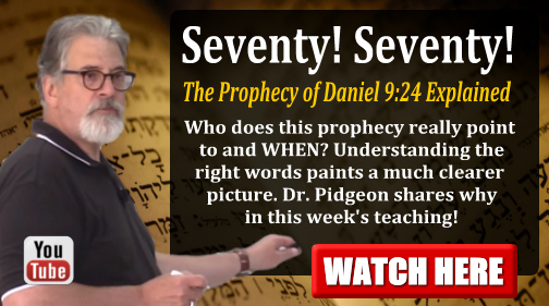 weekly teaching 8