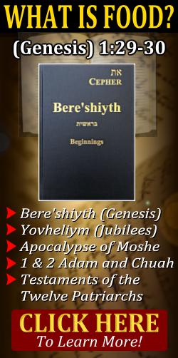 bereshiyth beginnings